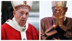 Stop killings in Nigeria - Pope tells Buhari in viral video
