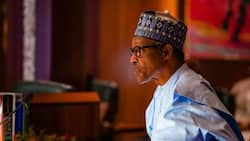 Breaking: President Buhari makes fresh appointments into petroleum sector