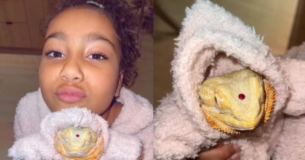 Adorable photo of Kim Kardashian's daughter in matching outfits with pet lizard