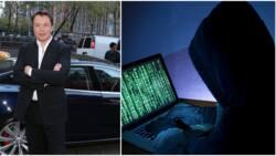 Hacker group, Anonymous, accuses Elon Musk of killing bitcoin investors' dreams, threatens him