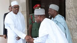 Ahead of 2019 election, Governor Bagudu highlights President Buhari's achievement
