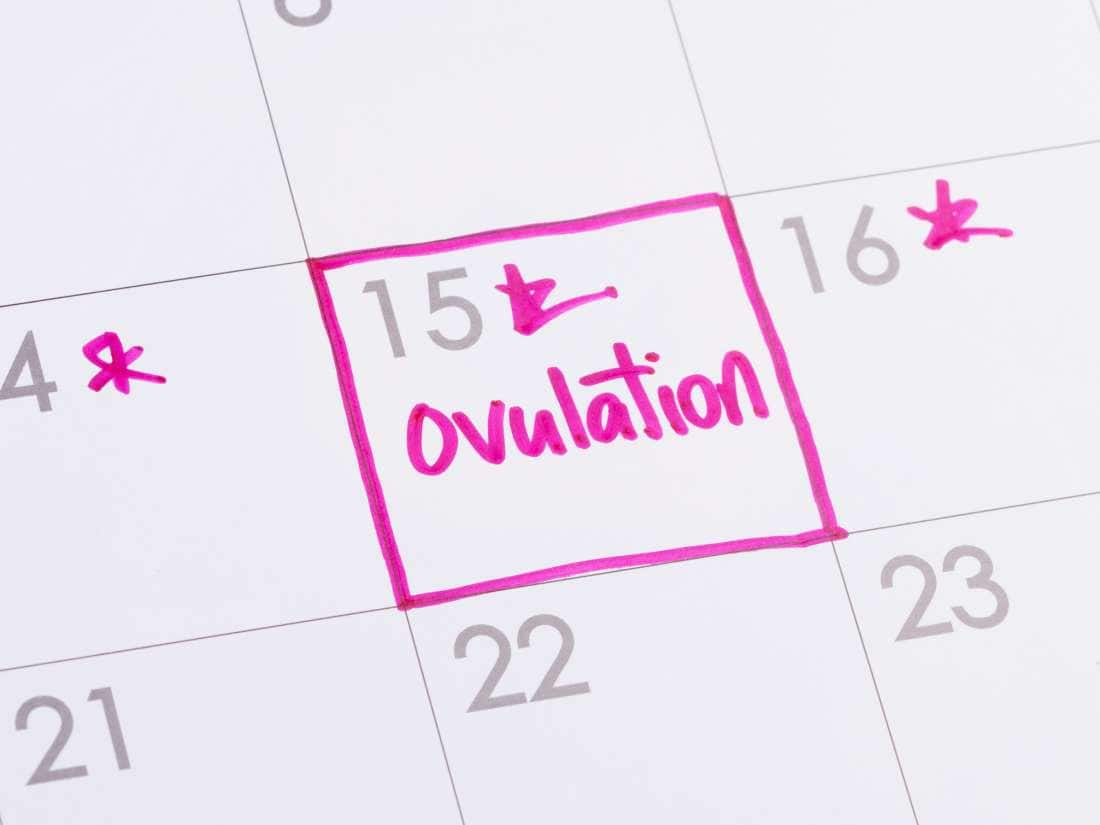 How to calculate ovulation period and safe period