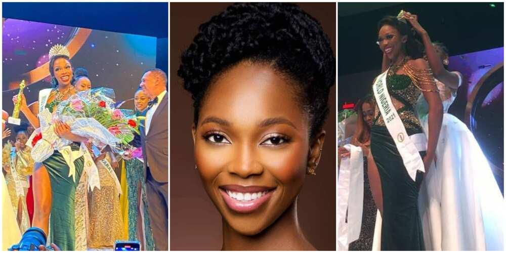 Miss Abuja Oluchi Madubuike crowned Most Beautiful Girl in Nigeria