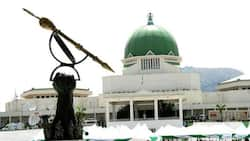Channel N10bn presidential fund to paying salaries, pension of suffering Kogi workers - PDP tells NASS