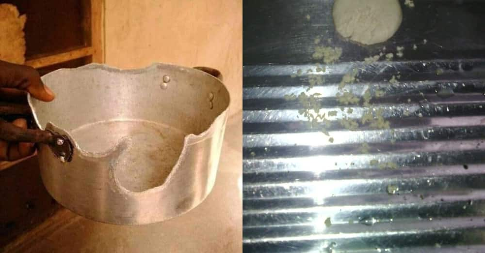 Rats in my kitchen ate my saucepan - Man narrates; research backs his claim