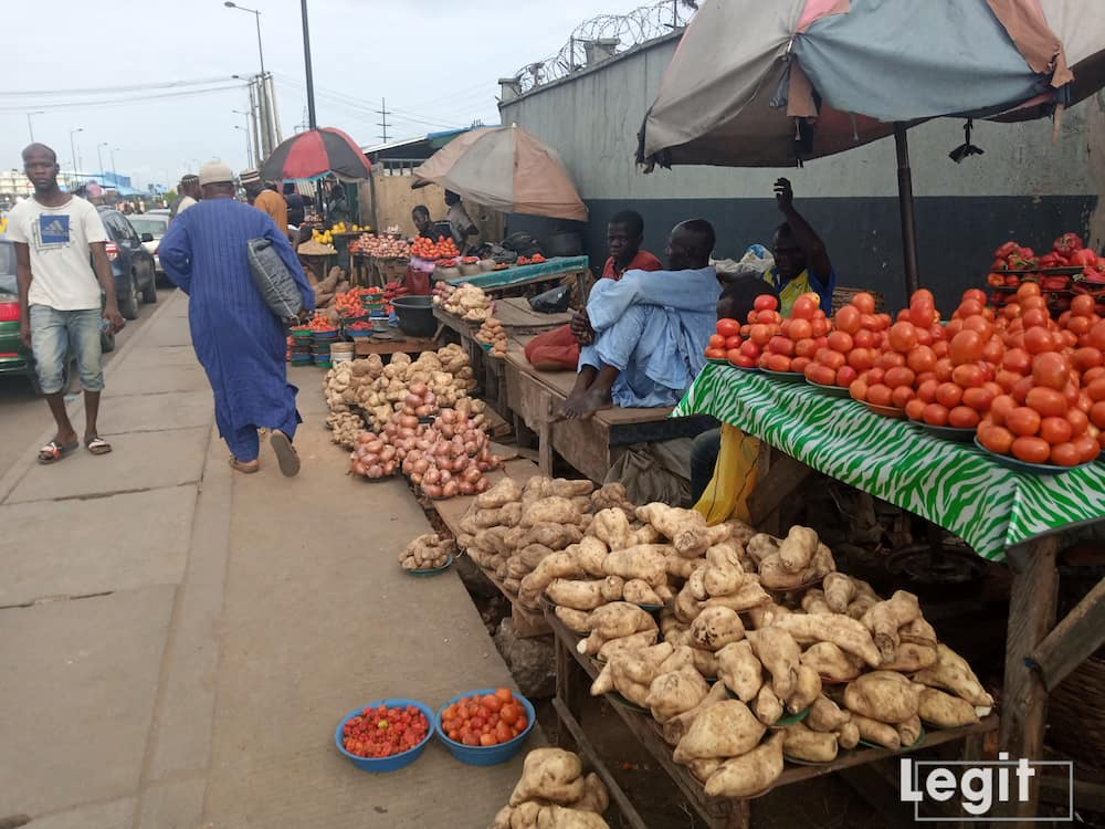 There's been a drop in the cost price of tomato and pepper as sweet potato becomes scarce leading to increment in its cost of purchase. photo credit: Esther Odili