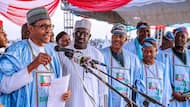 Excitement reported across Yobe as President Buhari prepares to visit