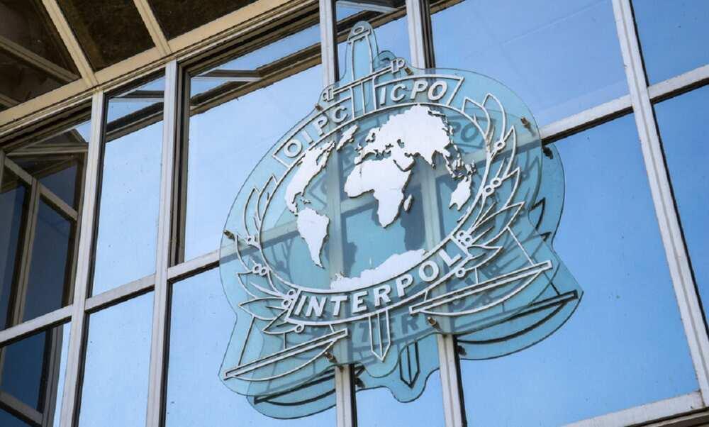 Interpol ta kama wasu 'Yan Najeriya da ake zargi da laifin damfarar Kamfanoni