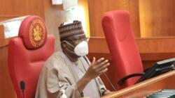 Ya kamata a kula, watakila tuban muzuru 'yan Boko Haram ke yi, in ji Ahmed Lawan