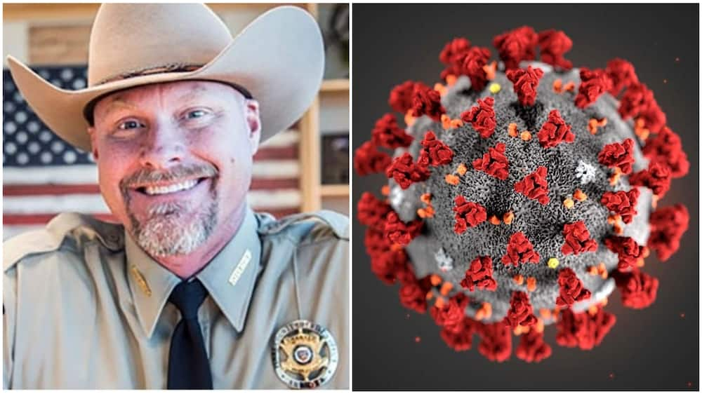 A collage showing Sheriff Mark Lamb. Photos sources: CNN/NewScientist