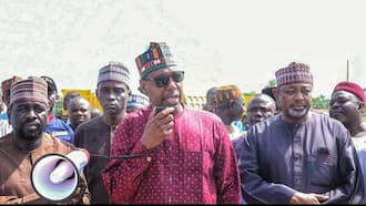 Breaking: Governor Zulum speaks on alleged visit to Abba Kyari's residence