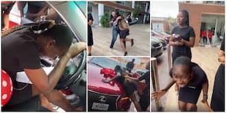Priceless moment Nigerian lady screamed, shed tears as female boss stunned her with new Lexus car in video