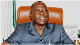 2019: Retired generals are ganging up against Buhari - Oshiomole