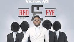 Victor AD– Doh: fascinating details about the hit