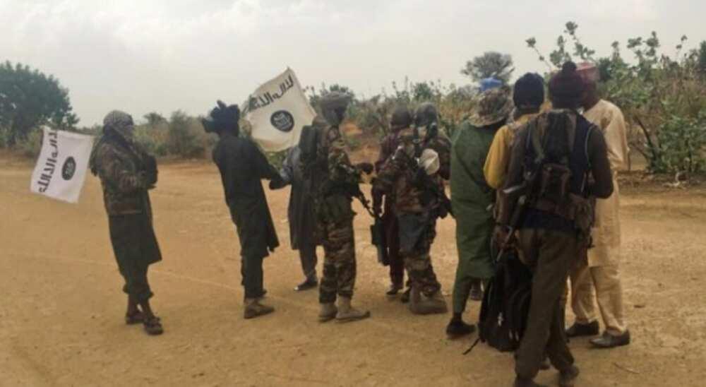 """Buhari ya kwatanta mayakan Boko Haram da """"mayunwata masu nema abinci"""""""