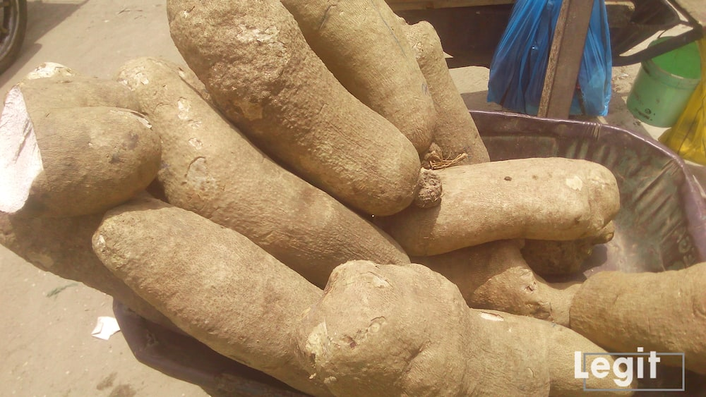 Yam is cost and this is due to high cost of transportation and security issues in the country. Photo credit: Esther Odili