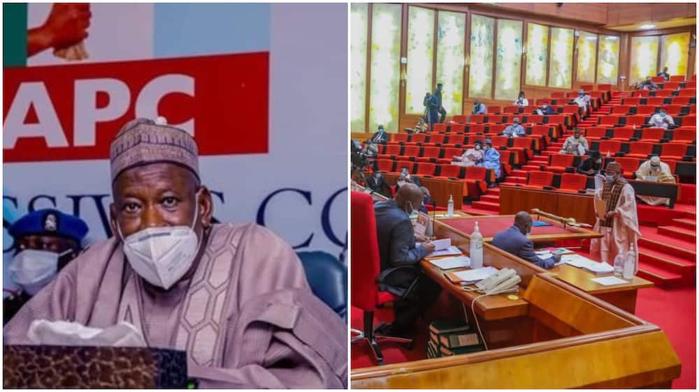 Herdsmen crisis: Senate reacts as northern governor asked FG to ban cattle movement from north to south