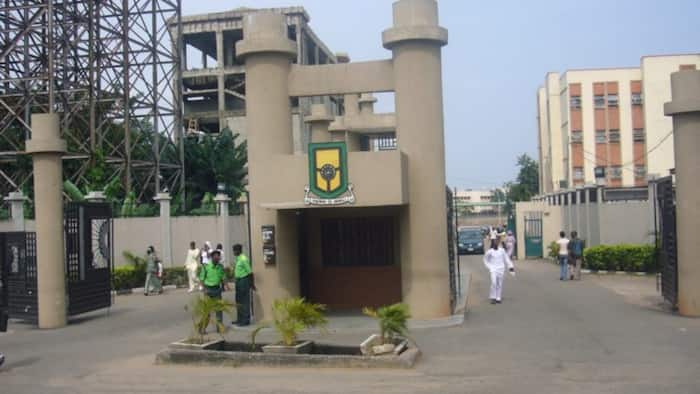 Coronavirus: YABATECH appeals to dead worker's colleagues to go for test