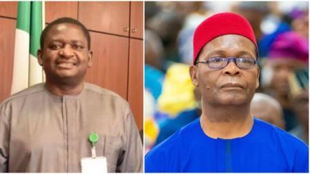 Joe Igbokwe: When it's a crime to love Buhari, Nigeria, Igbo land by Femi Adesina