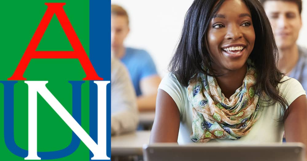 American University of Nigeria courses and fees