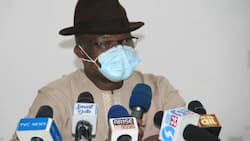 Delta state govt clarifies its position on open grazing ban