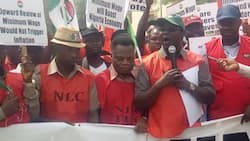 NLC announces planned nationwide strike, discloses reason for industrial action