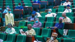 List of Buhari's appointees House of Reps wants to probe over delayed Customs scanner project