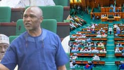Tension as House set to punish member who called for Buhari's impeachment over insecurity