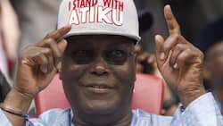 Victory of Atiku is sealed - White witches in Nigeria say after several meetings on mountain tops
