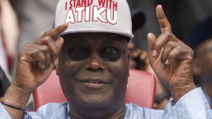 Former Niger Delta militants berate presidency over search of Atiku's jet