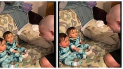 Twin babies light up the internet with their reactions on seeing their father's shaved head
