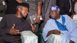 2023: Group urges Osinbajo to run, wants Tinubu to withdraw from race