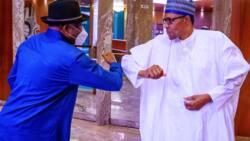 Buhari receives former president Jonathan on Mali crisis