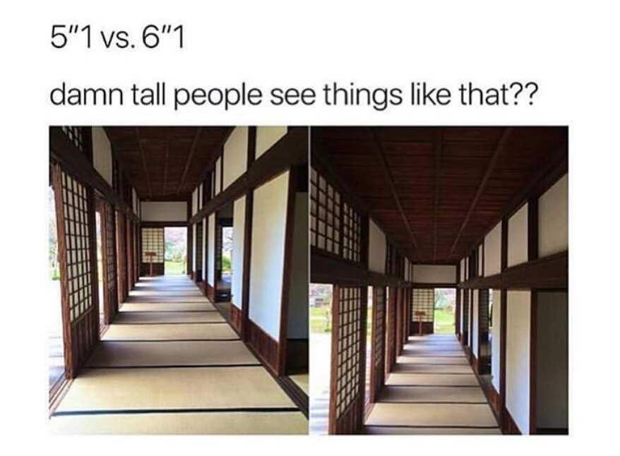 Short person jokes.