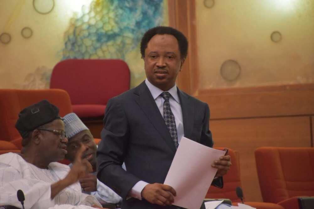 Shehu Sani reacts as US imposes visa ban on Kogi, Bayelsa election riggers