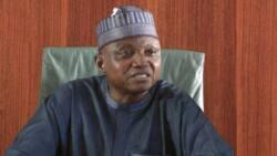 Buhari has done worse to AK-47-wielding bandits than declaring them terrorists, Garba Shehu