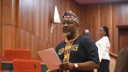 We cannot abandon Dino Melaye because he is useful to us - PDP campaign council