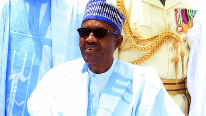 CSOs urge Buhari to appoint permanent head for Presidential Amnesty Office