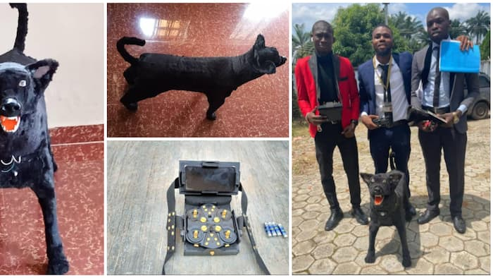 3 talented Nigerian students build dog that is remote-controlled as final year project in viral photos