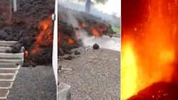 Heartbreaking: Photos emerges of families hit by raging volcanic eruptions in Spain