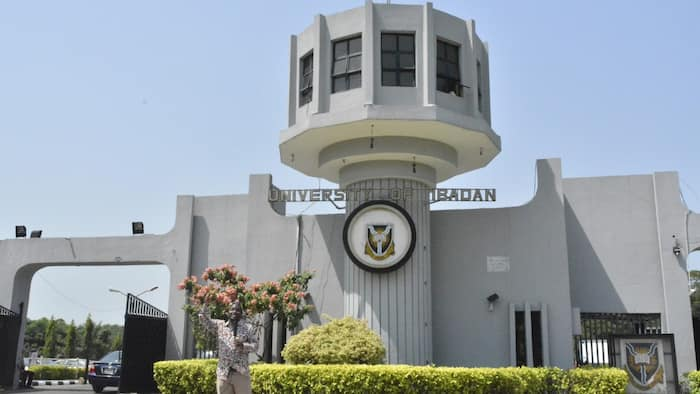Full list: 16 professors who are battling to become the new vice chancellor of UI