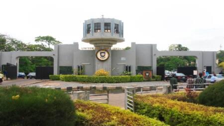 Breaking: University of Ibadan finally names Adebowale as 13th VC