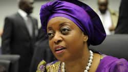 How I delivered $70m in 12 bags to Abuja banker on Diezani's instructions - Ex-NNPC GM reveals