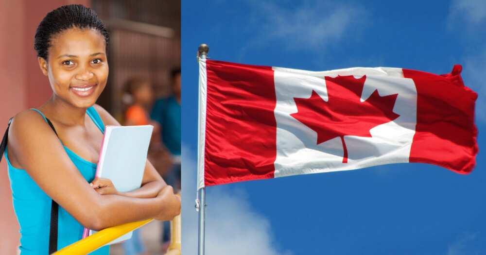 Cheap schools in Canada