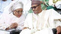 Dogo dan Daura: Abu ne mai matukar wuya in fadi zaben 2019 - Shugaba Buhari
