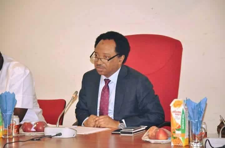 Bandits attack: Shehu Sani lists 6 ways to protect schools in northern Nigeria