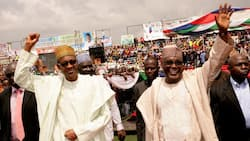 Legit.ng poll: Between Buhari and Atiku, Nigerians online reveal their 2019 presidential candidate
