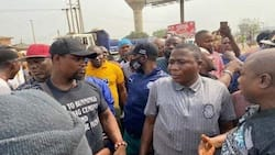 Yoruba scholars, monarchs demand decentralised government, tell Igboho to take it easy