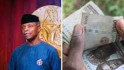 """Osinbajo calls for naira exchange rate to be determined by market forces at it is currently """"artificially low"""""""