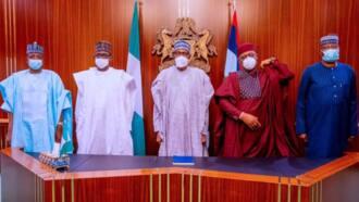 Presidency finally reveals why Buhari showed mercy to Fani-Kayode